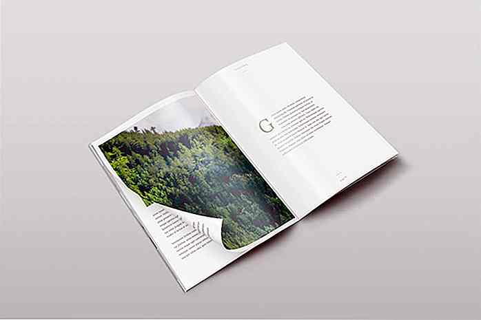 40 Creative Magazine PSD Mockups zum Download