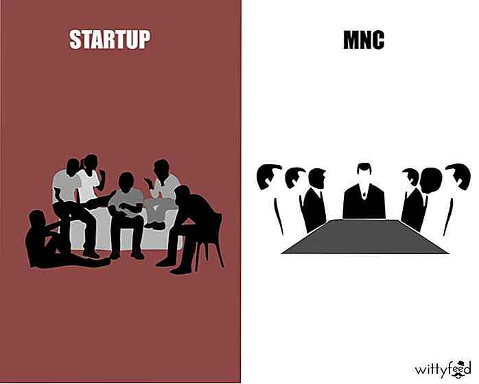 Differenze tra start-up e MNC [PIC]
