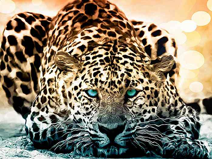50 Amazing Wildlife & Animal Wallpapers