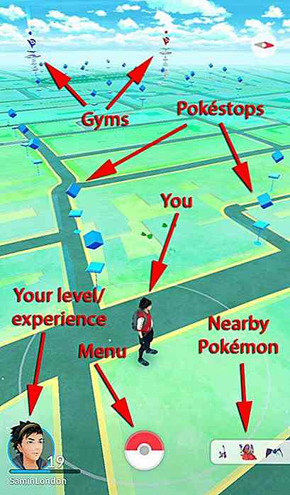 10+ Essential Pokemon Go-tips, grafieken en infographics voor de trainers