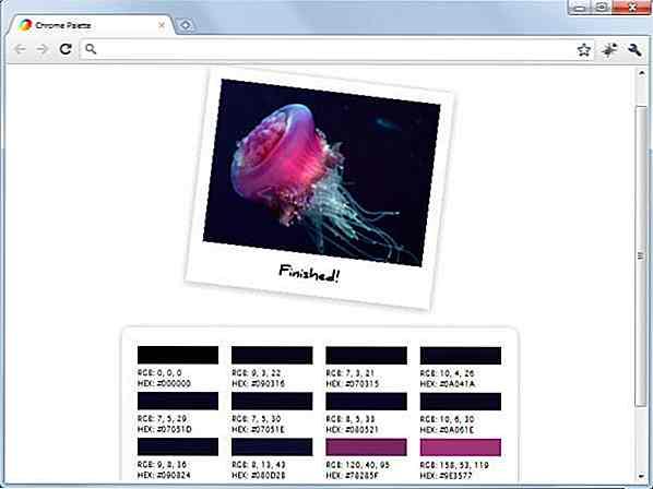 40 utili estensioni di Google Chrome per i web designer - it